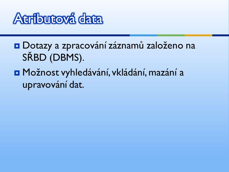  Dotazy a zpracování záznamů založeno na SŘBD (DBMS).