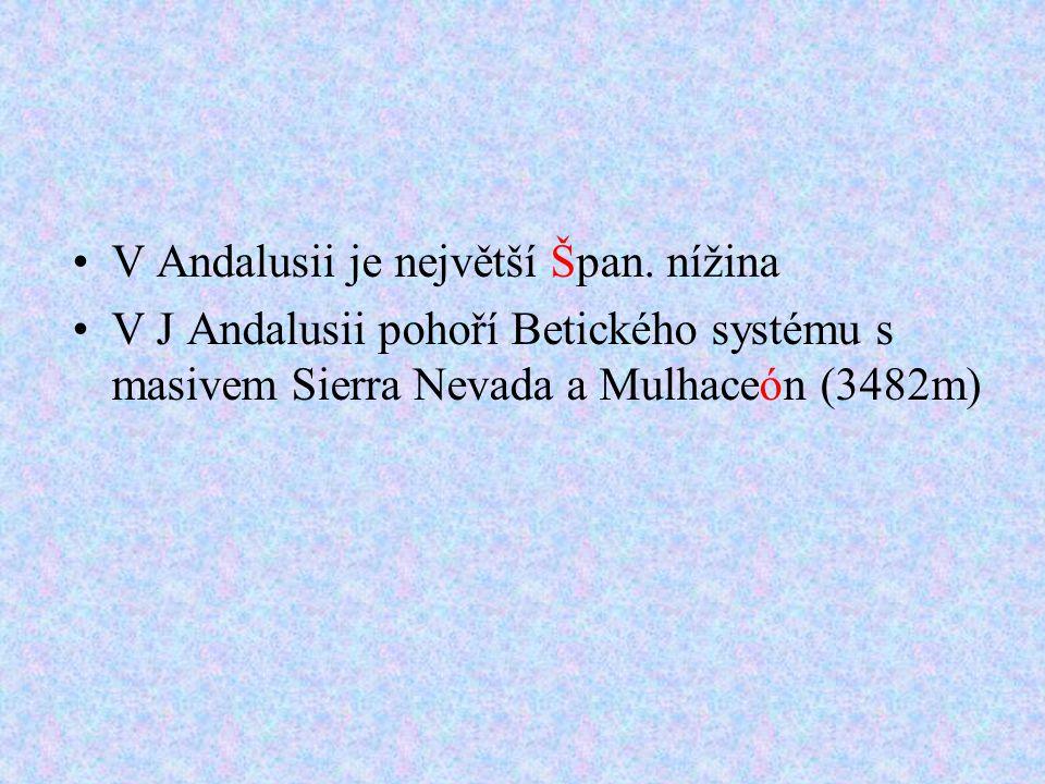 V Andalusii je největší Špan.