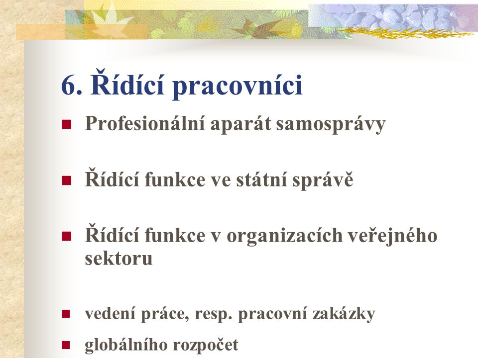 6. Řídící pracovníci Profesionální aparát samosprávy Řídící funkce ve státní správě Řídící funkce v organizacích veřejného sektoru vedení práce, resp.