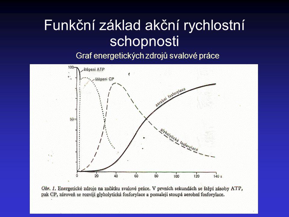 Funkční základ akční rychlostní schopnosti Graf energetických zdrojů svalové práce