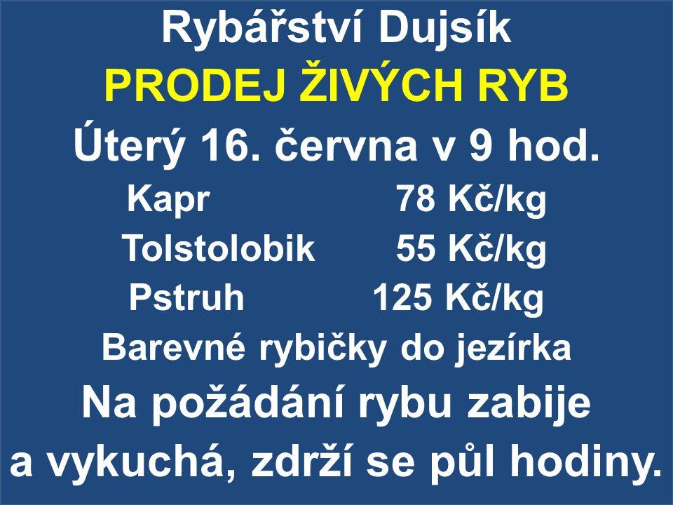 Rybářství Dujsík PRODEJ ŽIVÝCH RYB Úterý 16. června v 9 hod.