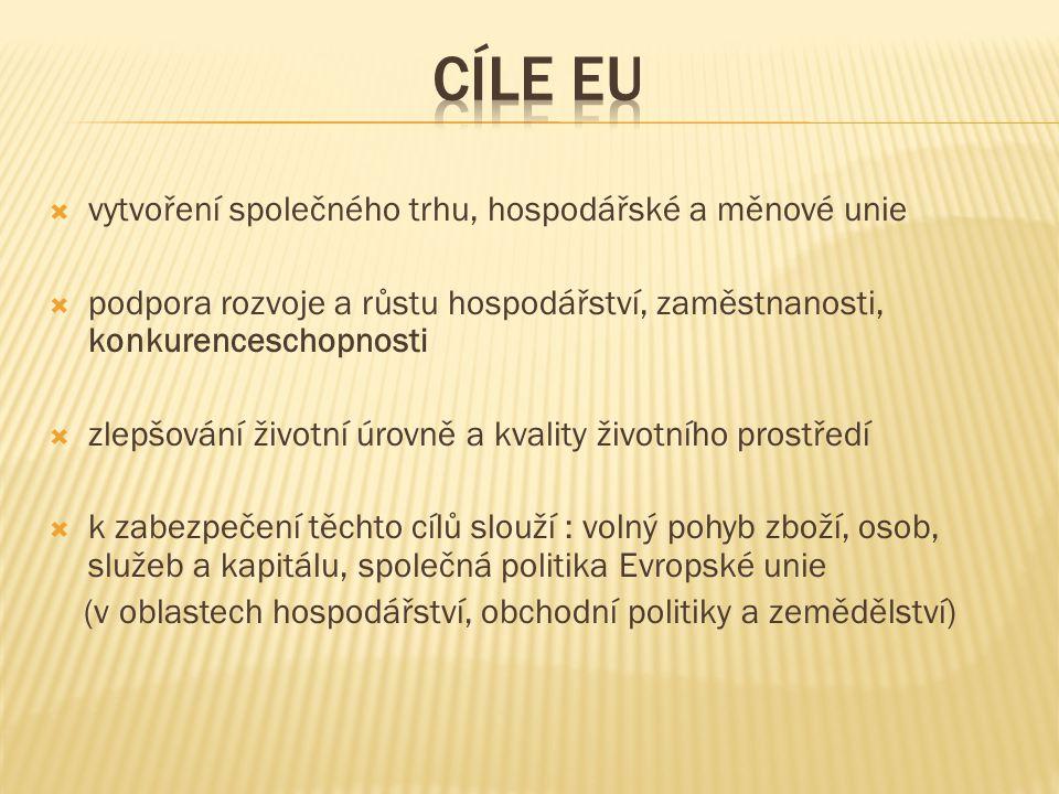 """ Evropská vlajka : symbolizuje jednotu, kruh s 12 hvězdami symbolizuje solidaritu a harmonii  Evropská hymna : závěrečná část """"Deváté symfonie L."""