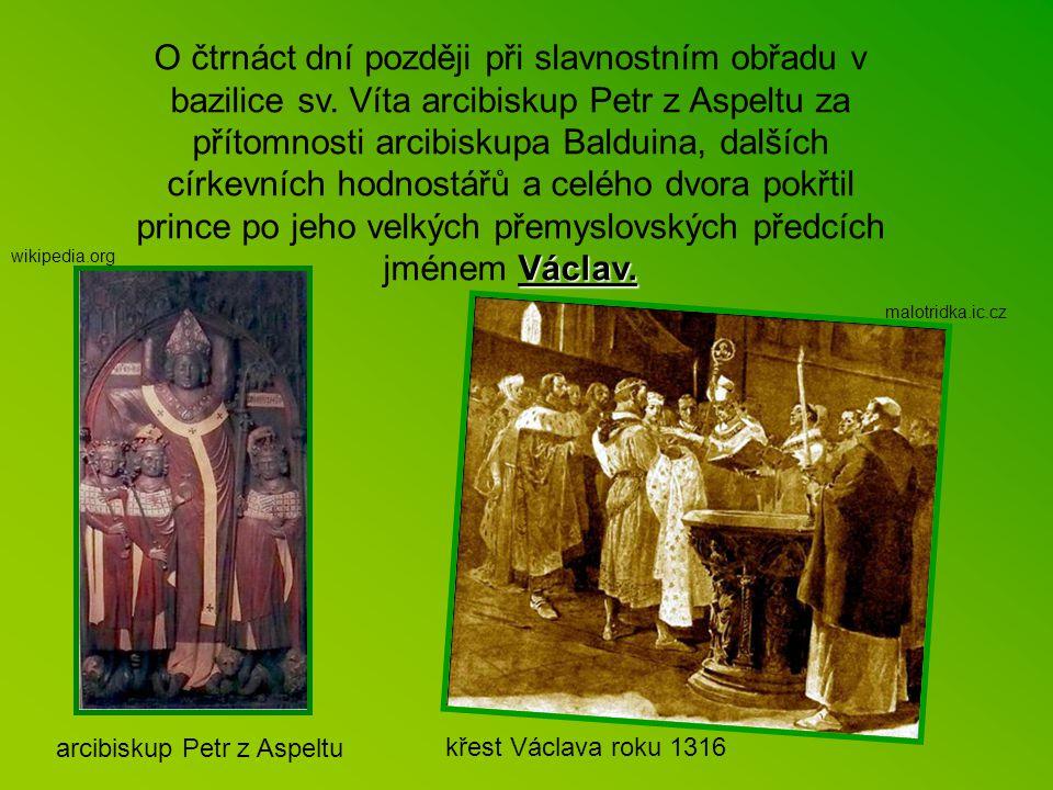 """Jak zaznamenal kronikář, dne 14. května 1316 se po dvou dcerách """"narodil na Pražském Městě Václav, prvorozený syn pana krále Jana a paní Elišky, králo"""