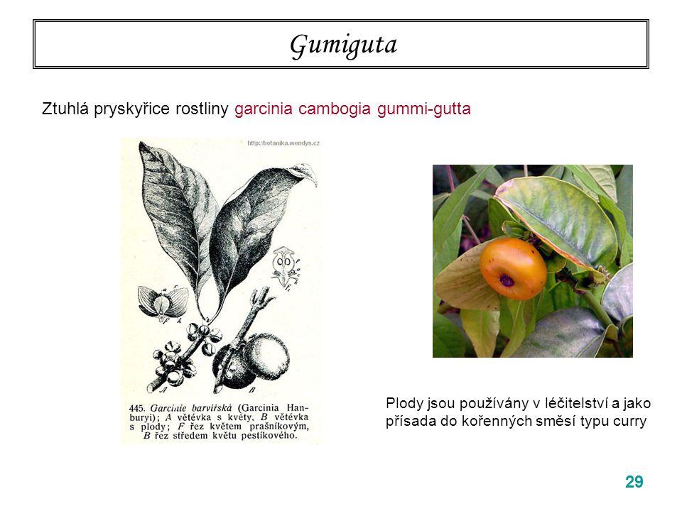 Gumiguta 29 Ztuhlá pryskyřice rostliny garcinia cambogia gummi-gutta Plody jsou používány v léčitelství a jako přísada do kořenných směsí typu curry