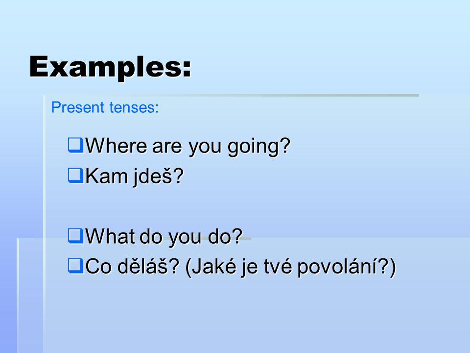  Where are you going?  Kam jdeš?  What do you do?  Co děláš? (Jaké je tvé povolání?) Examples: Present tenses: