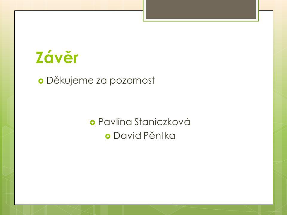 Závěr  Děkujeme za pozornost  Pavlína Staniczková  David Pěntka