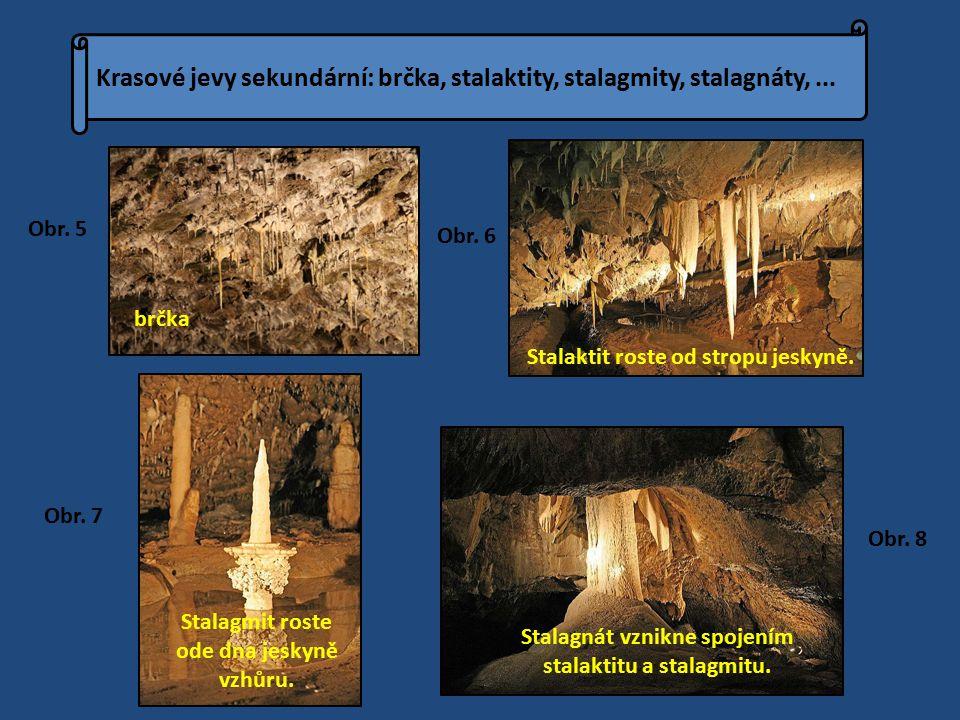 Stalaktit roste od stropu jeskyně. Stalagmit roste ode dna jeskyně vzhůru.