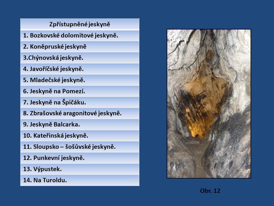 Zpřístupněné jeskyně 1. Bozkovské dolomitové jeskyně. 2. Koněpruské jeskyně 3.Chýnovská jeskyně. 4. Javoříčské jeskyně. 5. Mladečské jeskyně. 6. Jesky