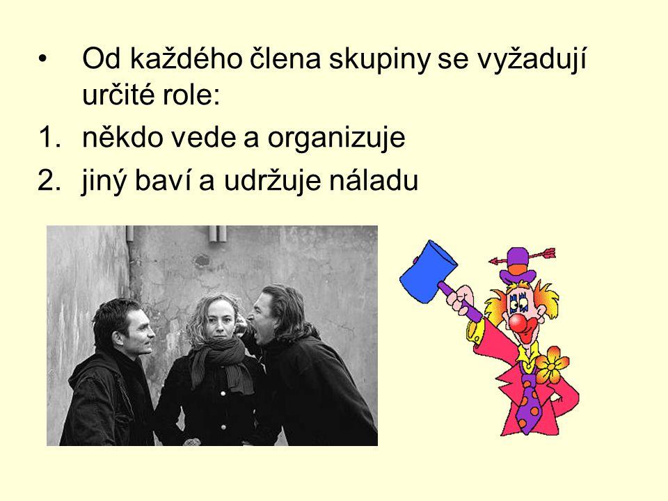 Od každého člena skupiny se vyžadují určité role: 1.někdo vede a organizuje 2.jiný baví a udržuje náladu