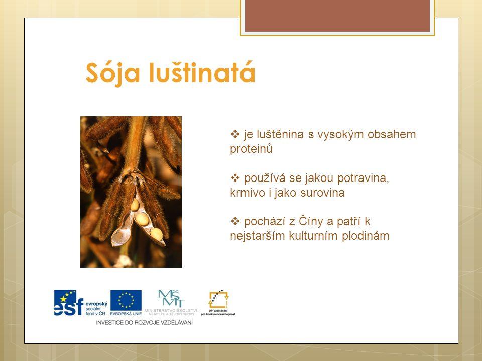 Sója luštinatá  je luštěnina s vysokým obsahem proteinů  používá se jakou potravina, krmivo i jako surovina  pochází z Číny a patří k nejstarším ku