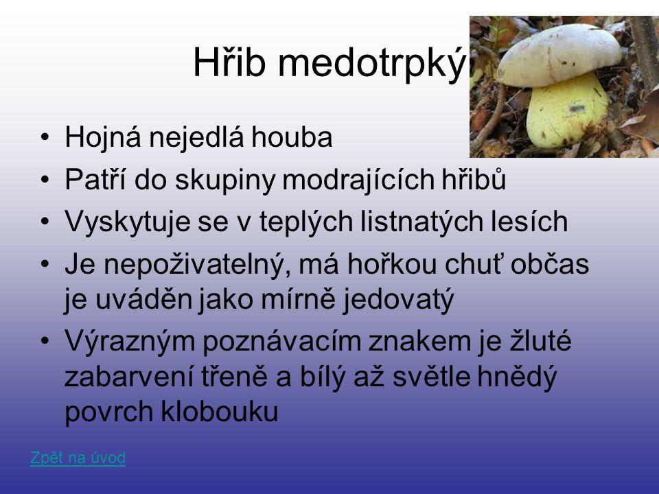 Hřib medotrpký Hojná nejedlá houba Patří do skupiny modrajících hřibů Vyskytuje se v teplých listnatých lesích Je nepoživatelný, má hořkou chuť občas