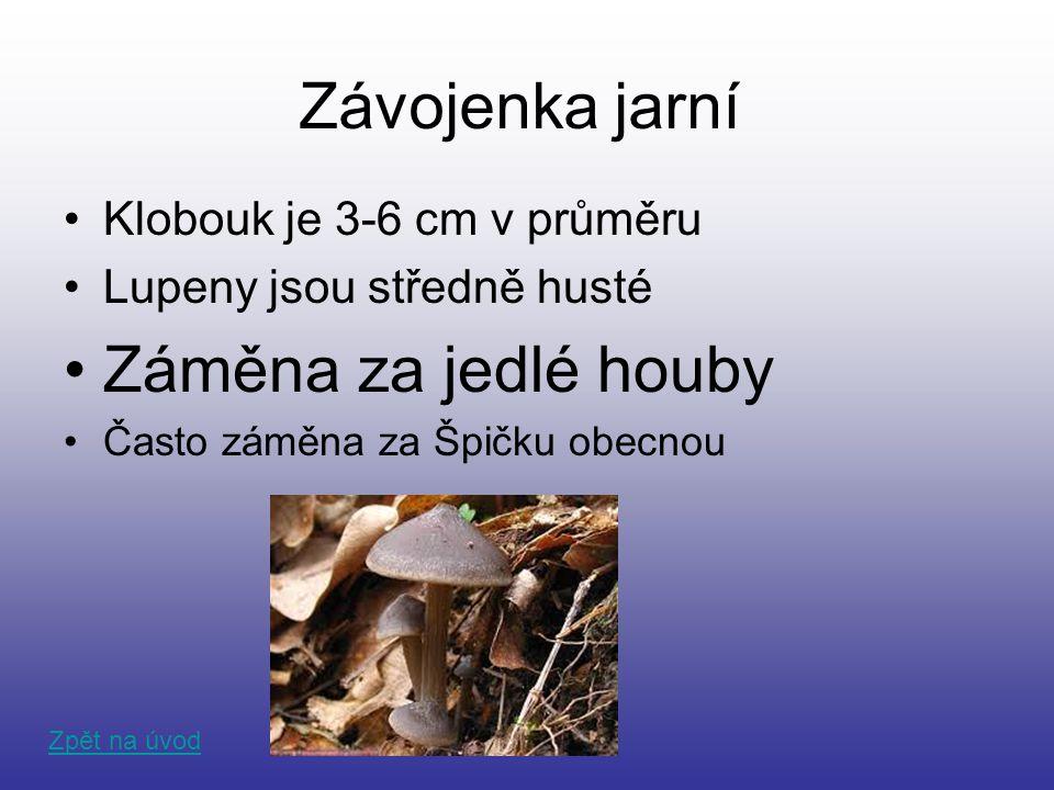 Závojenka jarní Klobouk je 3-6 cm v průměru Lupeny jsou středně husté Záměna za jedlé houby Často záměna za Špičku obecnou Zpět na úvod