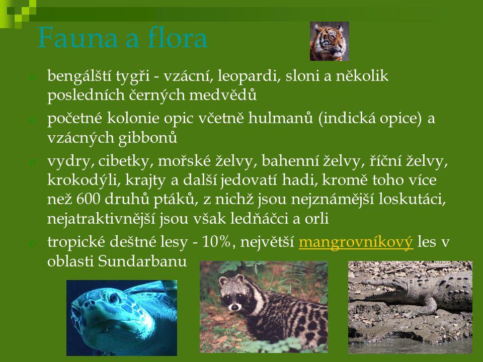 Fauna a flora o bengálští tygři - vzácní, leopardi, sloni a několik posledních černých medvědů o početné kolonie opic včetně hulmanů (indická opice) a vzácných gibbonů o vydry, cibetky, mořské želvy, bahenní želvy, říční želvy, krokodýli, krajty a další jedovatí hadi, kromě toho více než 600 druhů ptáků, z nichž jsou nejznámější loskutáci, nejatraktivnější jsou však ledňáčci a orli o tropické deštné lesy - 10%, největší mangrovníkový les v oblasti Sundarbanumangrovníkový