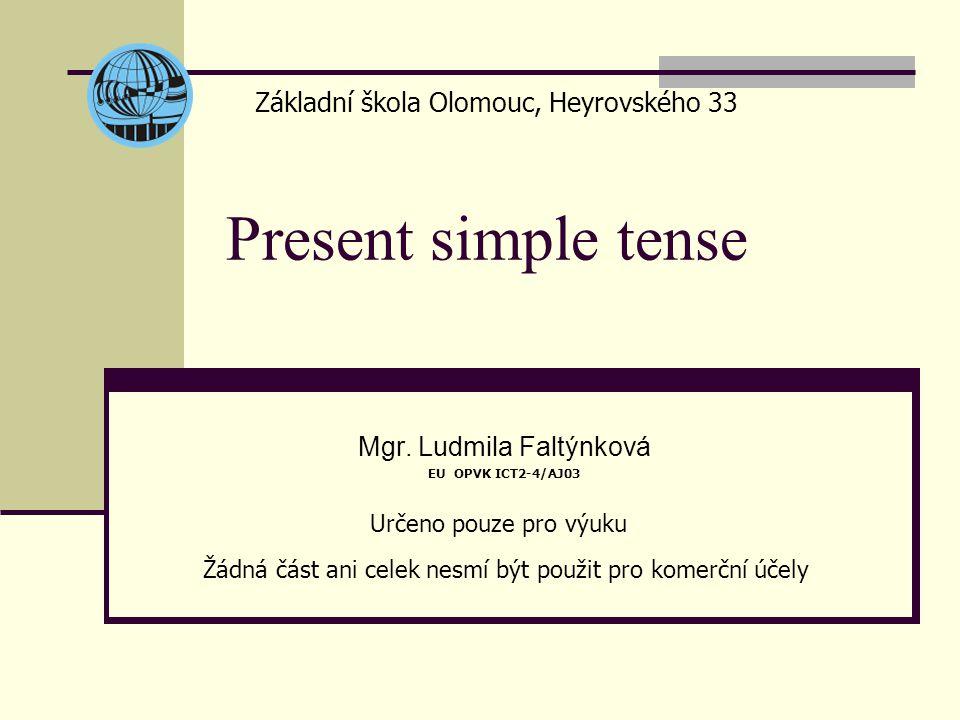 Present simple tense Mgr.