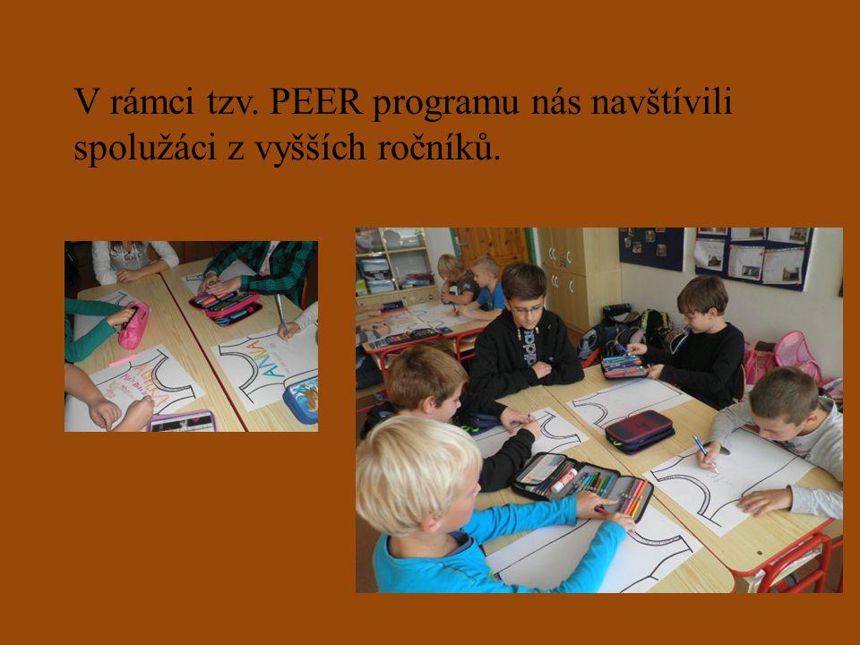 V rámci tzv. PEER programu nás navštívili spolužáci z vyšších ročníků.