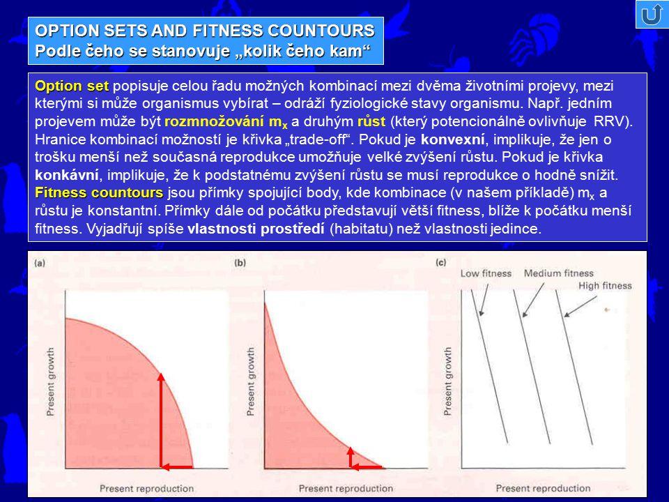 """OPTION SETS AND FITNESS COUNTOURS Podle čeho se stanovuje """"kolik čeho kam"""" Option set Fitness countours Option set popisuje celou řadu možných kombina"""
