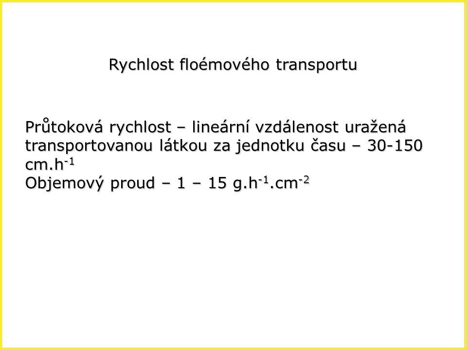 Rychlost floémového transportu Průtoková rychlost – lineární vzdálenost uražená transportovanou látkou za jednotku času – 30-150 cm.h -1 Objemový prou