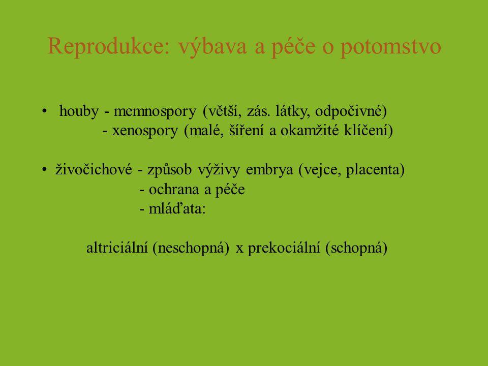 Reprodukce: výbava a péče o potomstvo houby - memnospory (větší, zás. látky, odpočivné) - xenospory (malé, šíření a okamžité klíčení) živočichové - zp
