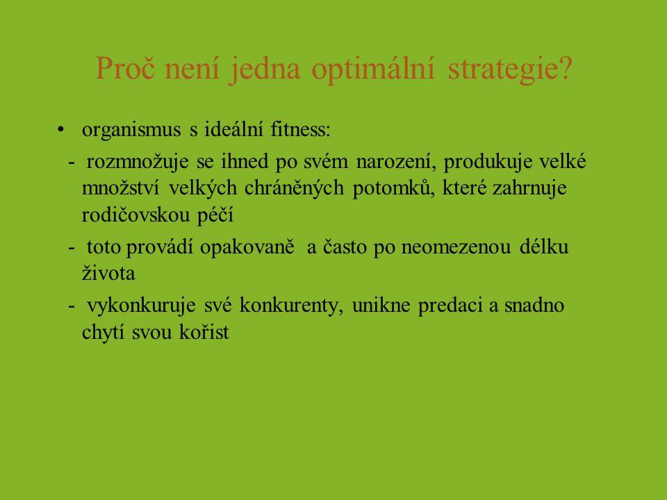 Proč není jedna optimální strategie? organismus s ideální fitness: - rozmnožuje se ihned po svém narození, produkuje velké množství velkých chráněných