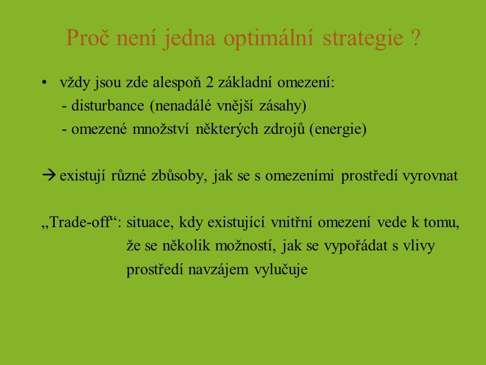 Proč není jedna optimální strategie ? vždy jsou zde alespoň 2 základní omezení: - disturbance (nenadálé vnější zásahy) - omezené množství některých zd