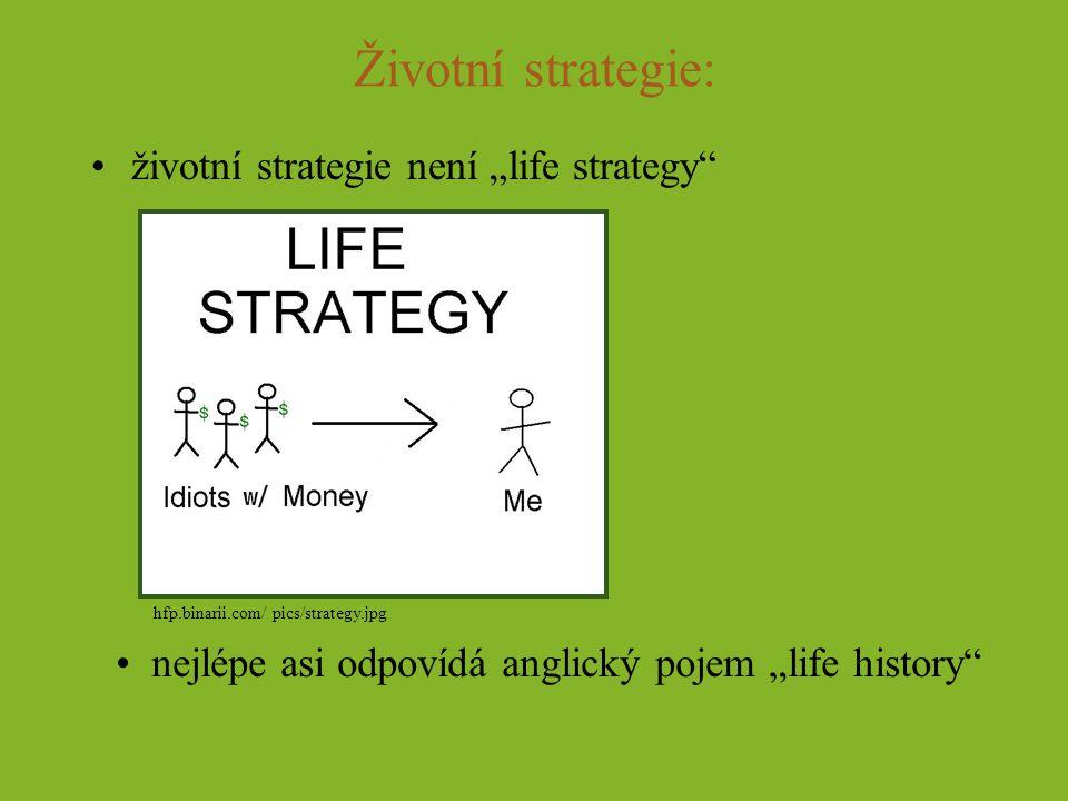 """Životní strategie: životní strategie není """"life strategy"""" nejlépe asi odpovídá anglický pojem """"life history"""" hfp.binarii.com/ pics/strategy.jpg"""
