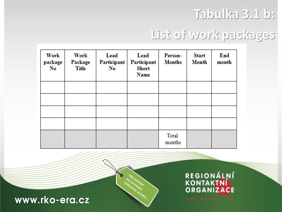Tabulka 3.1 b: List of work packages