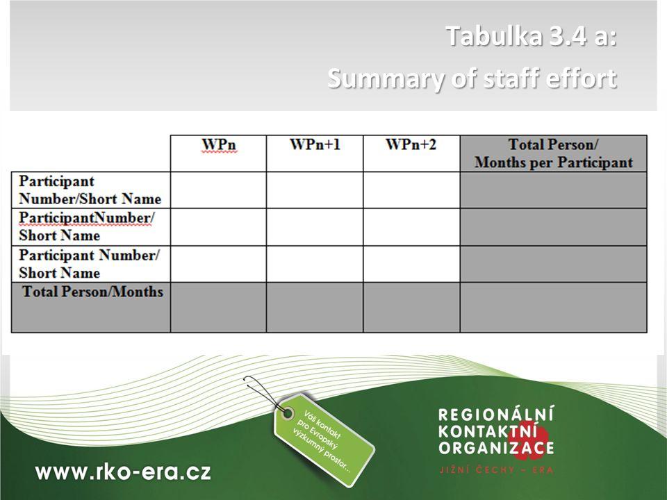 Tabulka 3.4 a: Summary of staff effort