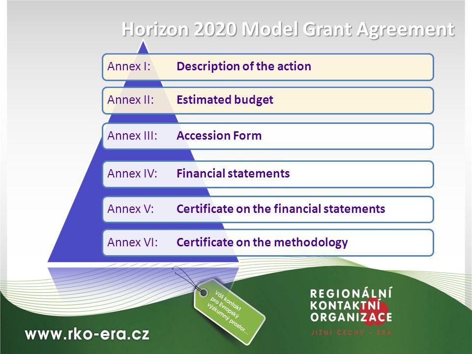 Annex I: Description of the actionAnnex II:Estimated budgetAnnex III:Accession FormAnnex IV:Financial statementsAnnex V: Certificate on the financial
