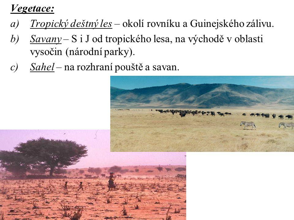 Vegetace: a)Tropický deštný les – okolí rovníku a Guinejského zálivu. b)Savany – S i J od tropického lesa, na východě v oblasti vysočin (národní parky