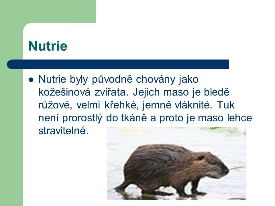 Nutrie Nutrie byly původně chovány jako kožešinová zvířata. Jejich maso je bledě růžové, velmi křehké, jemně vláknité. Tuk není prorostlý do tkáně a p