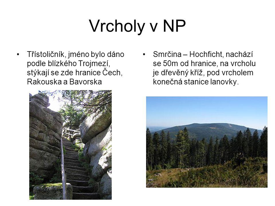 Vrcholy v NP Třístoličník, jméno bylo dáno podle blízkého Trojmezí, stýkají se zde hranice Čech, Rakouska a Bavorska Smrčina – Hochficht, nachází se 5
