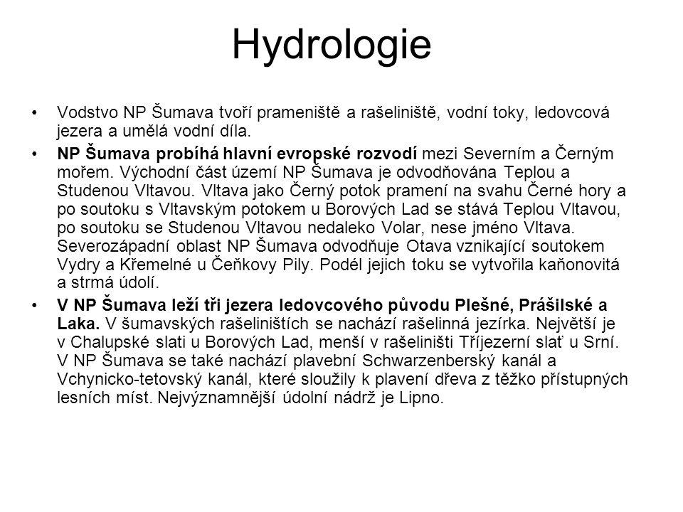 Hydrologie Vodstvo NP Šumava tvoří prameniště a rašeliniště, vodní toky, ledovcová jezera a umělá vodní díla. NP Šumava probíhá hlavní evropské rozvod