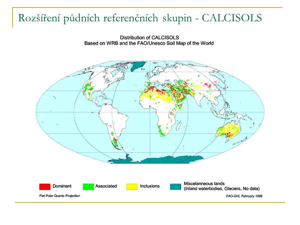 Rozšíření půdních referenčních skupin - CALCISOLS
