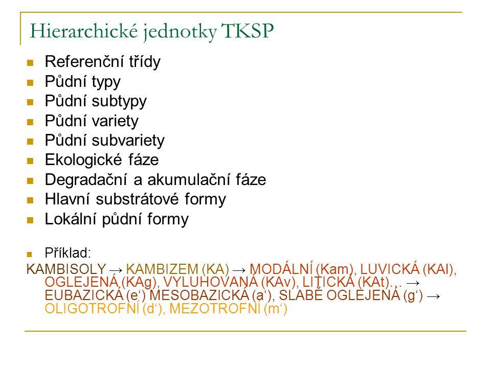 Hierarchické jednotky TKSP Referenční třídy Půdní typy Půdní subtypy Půdní variety Půdní subvariety Ekologické fáze Degradační a akumulační fáze Hlavn
