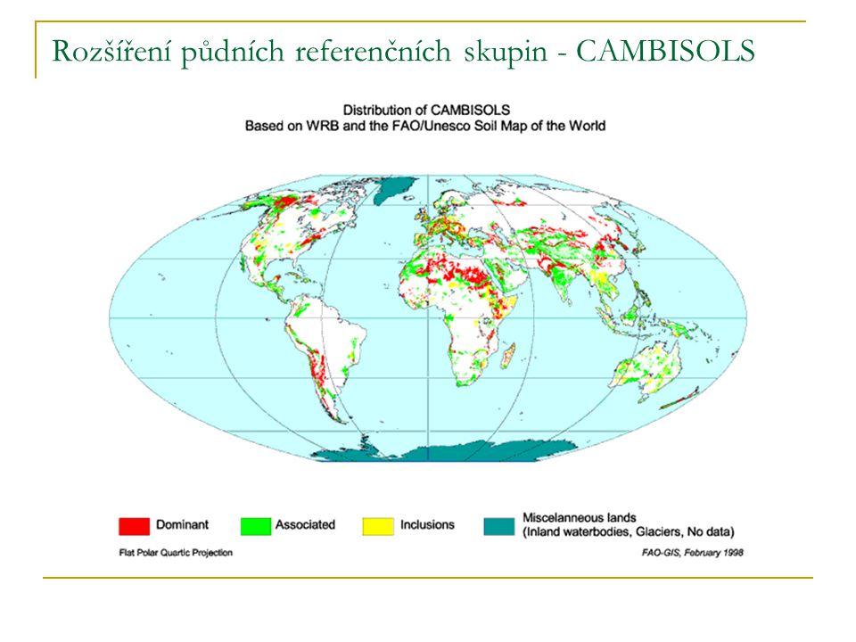 Rozšíření půdních referenčních skupin - CAMBISOLS