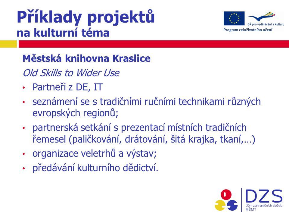 Příklady projektů na kulturní téma Městská knihovna Kraslice Old Skills to Wider Use Partneři z DE, IT seznámení se s tradičními ručními technikami různých evropských regionů; partnerská setkání s prezentací místních tradičních řemesel (paličkování, drátování, šitá krajka, tkaní,…) organizace veletrhů a výstav; předávání kulturního dědictví.