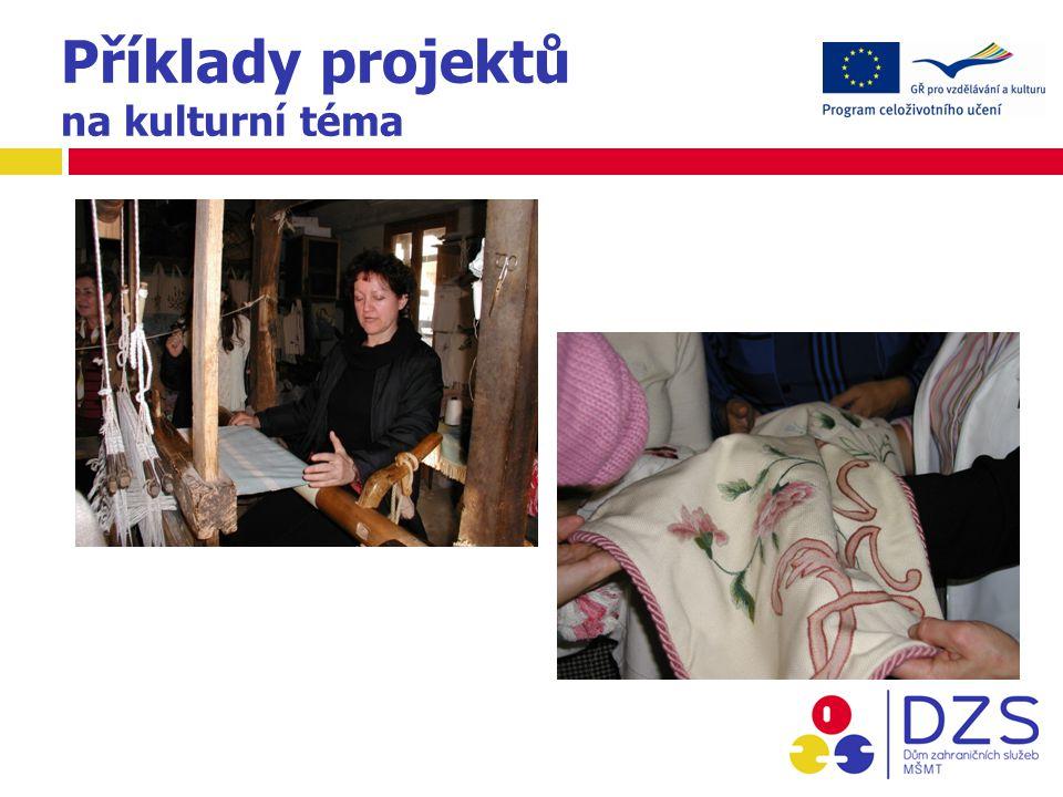 Příklady projektů na kulturní téma