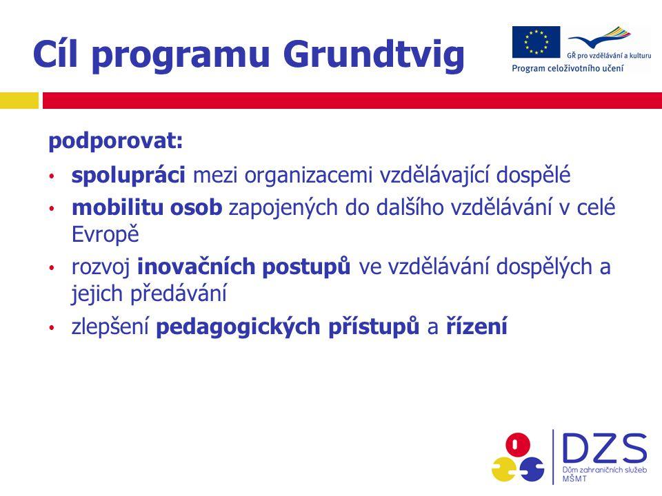 Cíl programu Grundtvig podporovat: spolupráci mezi organizacemi vzdělávající dospělé mobilitu osob zapojených do dalšího vzdělávání v celé Evropě rozvoj inovačních postupů ve vzdělávání dospělých a jejich předávání zlepšení pedagogických přístupů a řízení