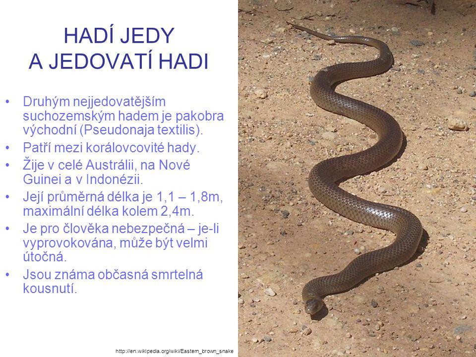 HADÍ JEDY A JEDOVATÍ HADI Druhým nejjedovatějším suchozemským hadem je pakobra východní (Pseudonaja textilis). Patří mezi korálovcovité hady. Žije v c