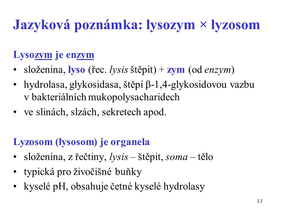13 Jazyková poznámka: lysozym × lyzosom Lysozym je enzym složenina, lyso (řec.