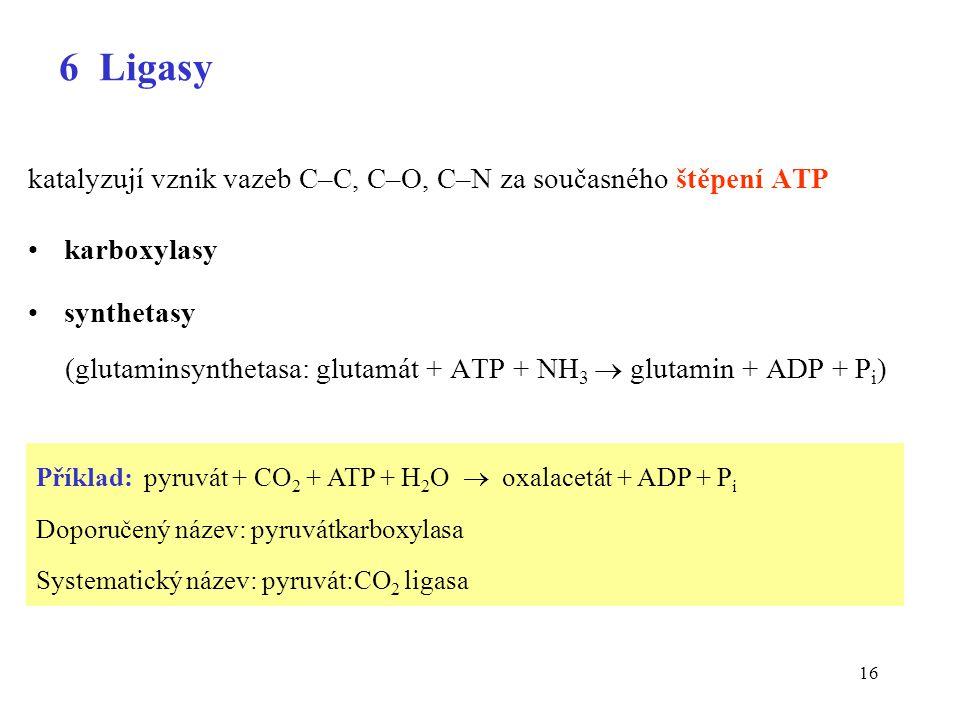 16 6 Ligasy katalyzují vznik vazeb C–C, C–O, C–N za současného štěpení ATP karboxylasy synthetasy (glutaminsynthetasa: glutamát + ATP + NH 3  glutamin + ADP + P i ) Příklad: pyruvát + CO 2 + ATP + H 2 O  oxalacetát + ADP + P i Doporučený název: pyruvátkarboxylasa Systematický název: pyruvát:CO 2 ligasa