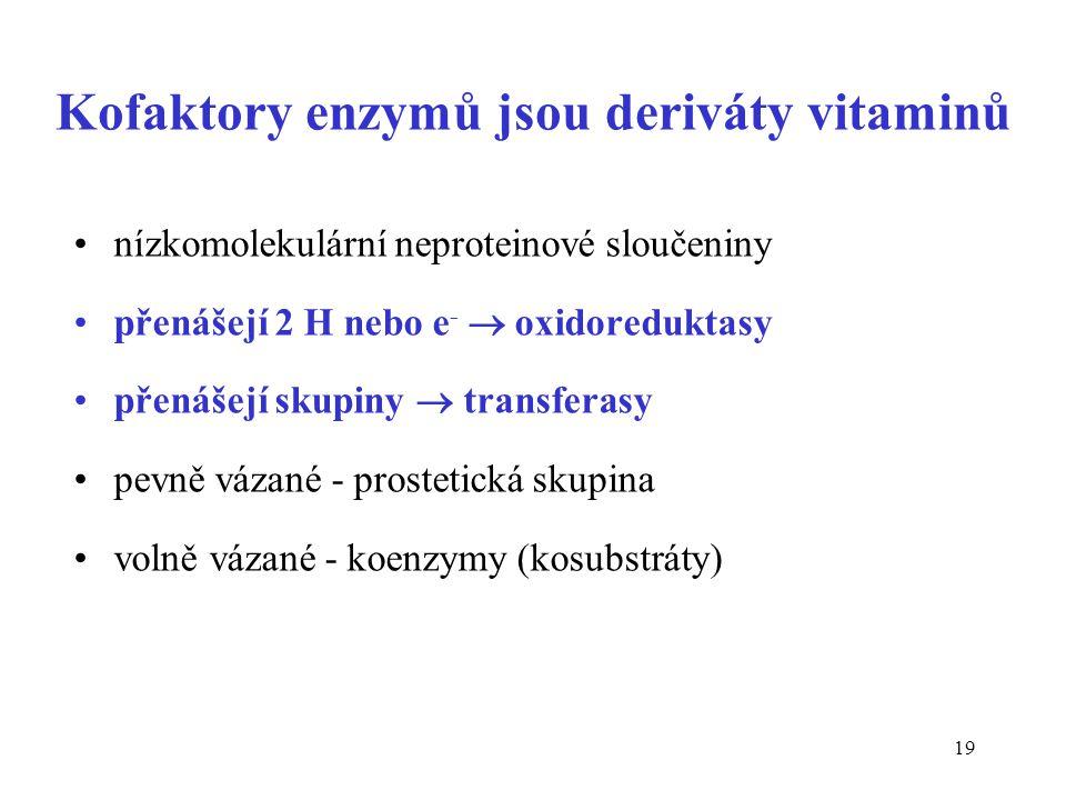 19 Kofaktory enzymů jsou deriváty vitaminů nízkomolekulární neproteinové sloučeniny přenášejí 2 H nebo e -  oxidoreduktasy přenášejí skupiny  transferasy pevně vázané - prostetická skupina volně vázané - koenzymy (kosubstráty)