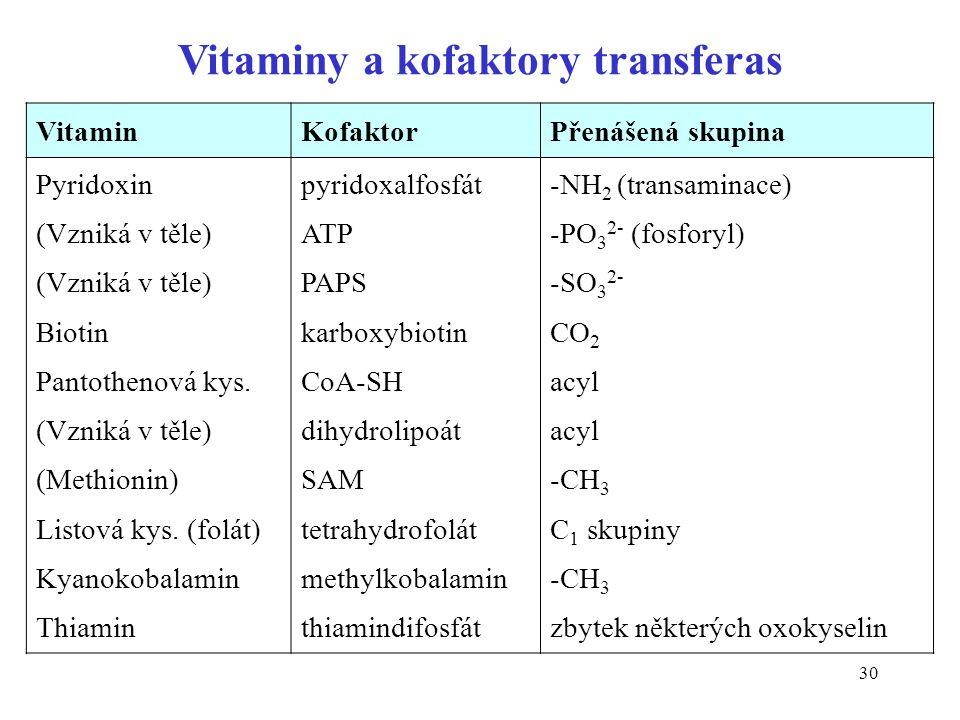30 VitaminKofaktorPřenášená skupina Pyridoxin (Vzniká v těle) Biotin Pantothenová kys.
