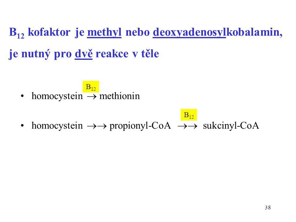 38 B 12 kofaktor je methyl nebo deoxyadenosylkobalamin, je nutný pro dvě reakce v těle homocystein  methionin homocystein  propionyl-CoA  sukcinyl-CoA B 12