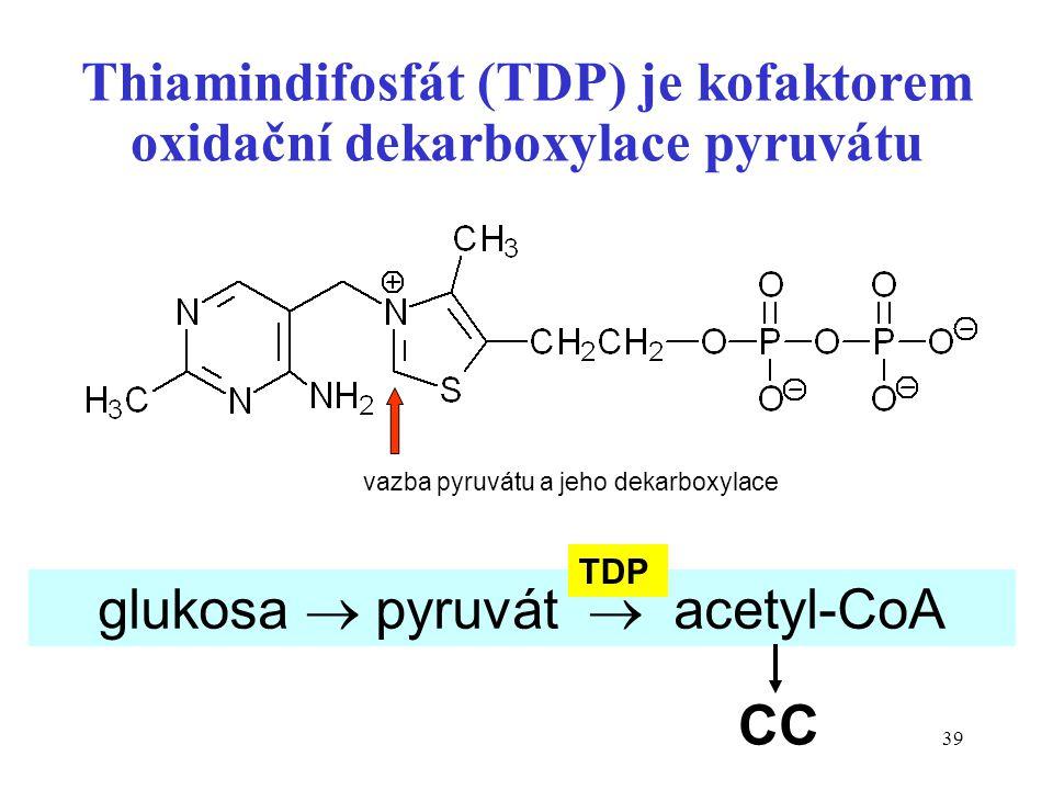 39 Thiamindifosfát (TDP) je kofaktorem oxidační dekarboxylace pyruvátu glukosa  pyruvát  acetyl-CoA CC TDP vazba pyruvátu a jeho dekarboxylace