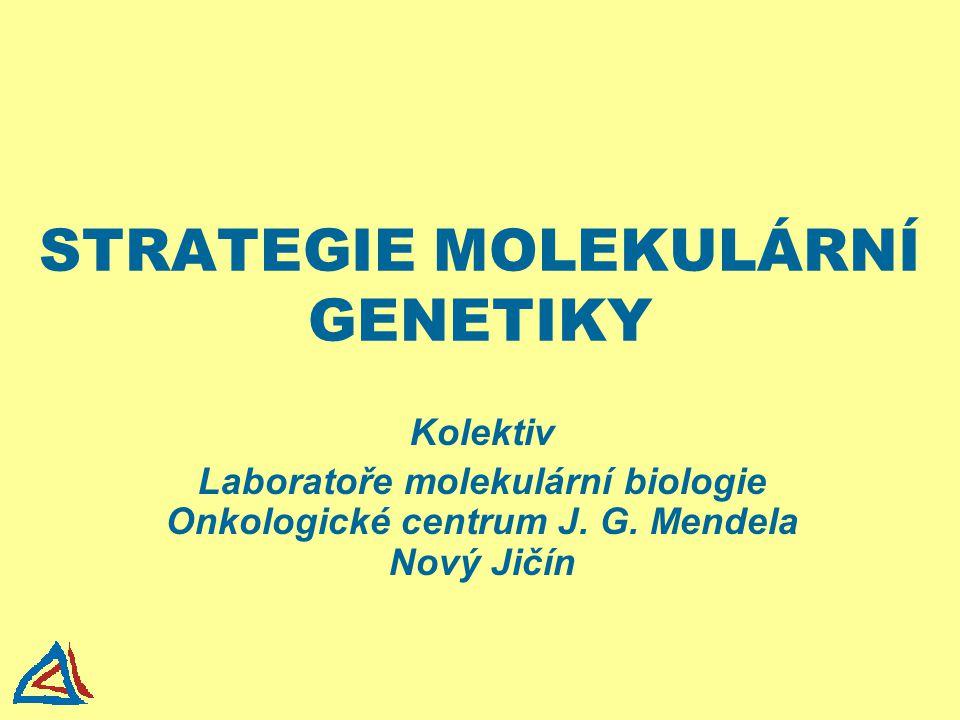 STRATEGIE MOLEKULÁRNÍ GENETIKY Kolektiv Laboratoře molekulární biologie Onkologické centrum J. G. Mendela Nový Jičín