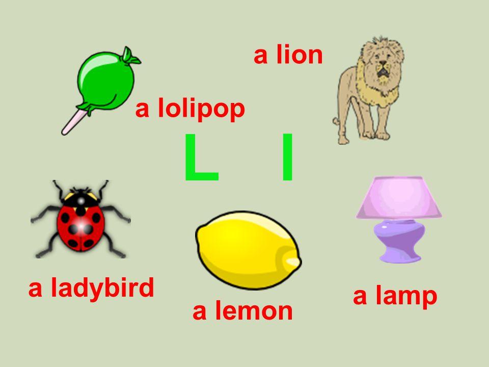 L l a ladybird a lion a lamp a lolipop a lemon