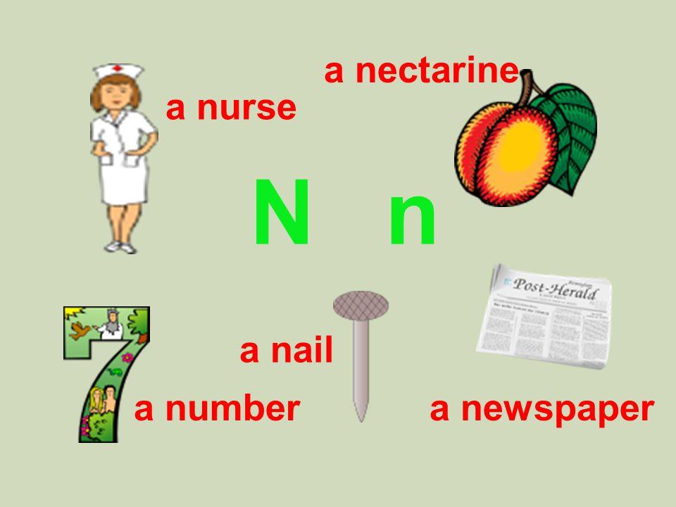 N n a nurse a nectarine a nail a numbera newspaper