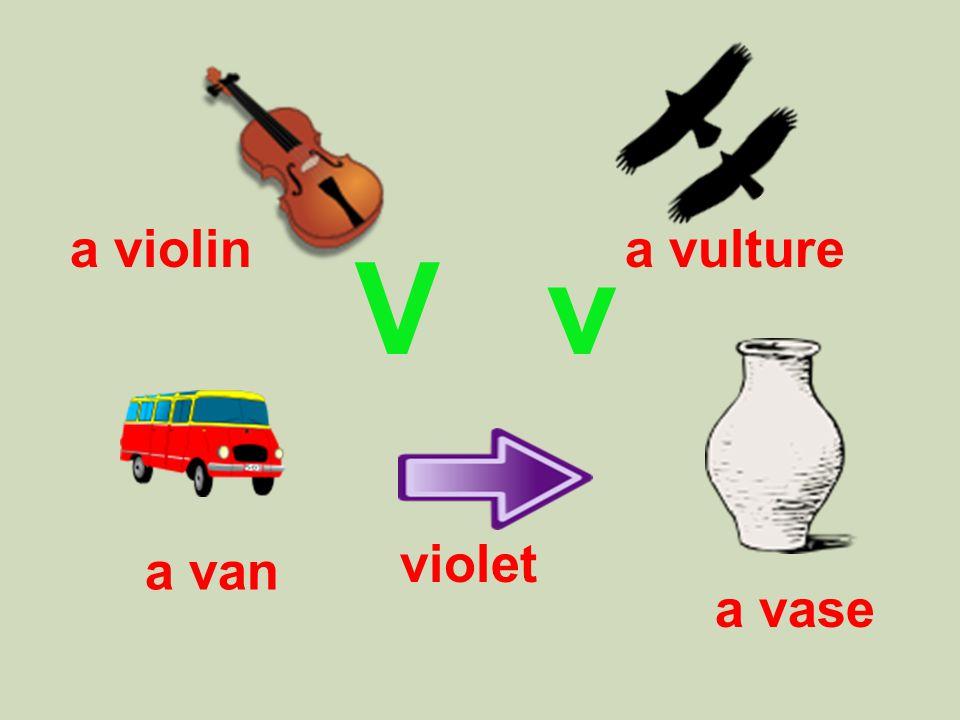 V v a vulture violet a vase a van a violin