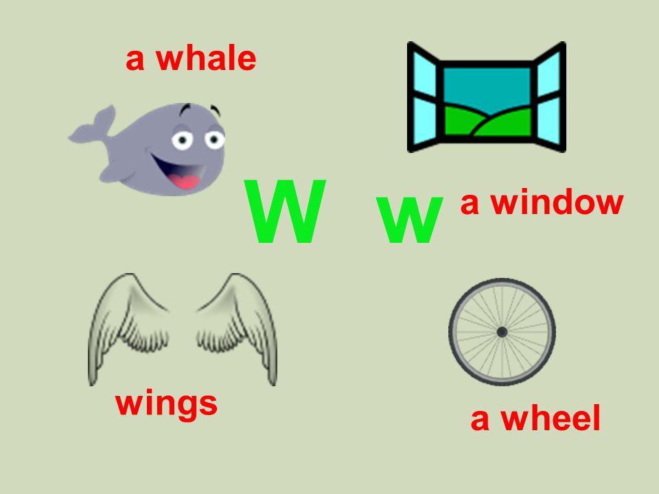 W w a whale a wheel wings a window